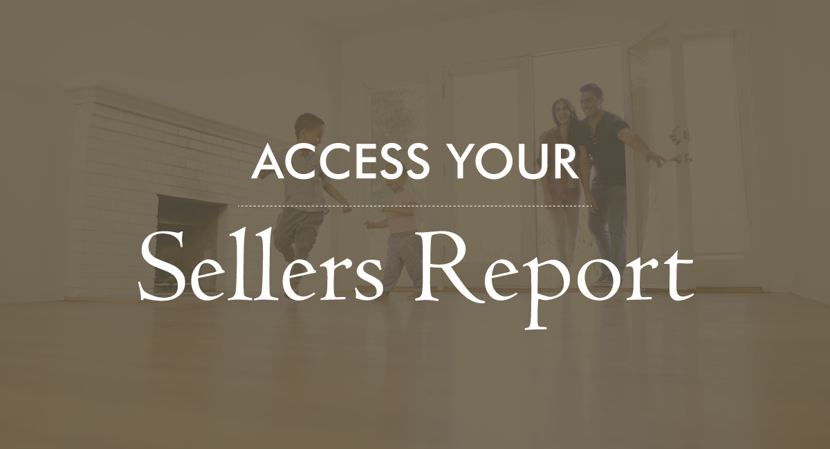 Access Your Sellers Report